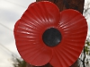 Man given £25 parking fine at Remembrance Day service