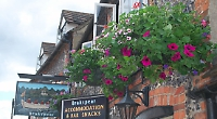 Hanging baskets total two more than 2020