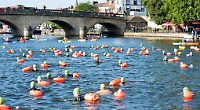 Swimmers at Henley Bridge