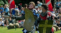 Ancient sport's joust the job for a day out
