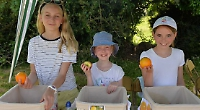 Visitors try to keep cool as village fete takes place in soaring temperatures