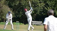 Nutts' knock not enough as Woodpeckers triumph