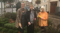 Residents plant snowdrops and crocuses on town green