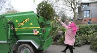 Christmas tree mulching raises £300 for Bloom team