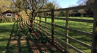 Good fences make good neighbours