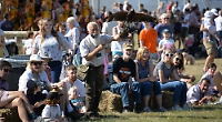 File picture of Henley Town and Country Show