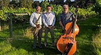 Jazz, fizz and food at village vineyard