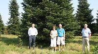 Christmas tree chosen by Mayor