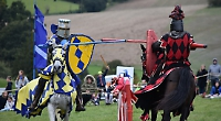 Visitors have to keep their distance at jousting event