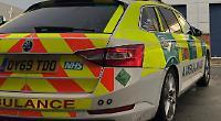 Boy, 12, dies after being hit by van