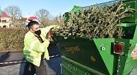 Christmas tree shredding raises £1,000