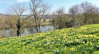 Riverside meadows with spectacular views and where wildlife thrives