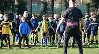 Juniors put through their paces on return to training