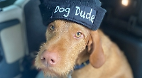 Hey, dude... here's proof that dog really is man's best friend