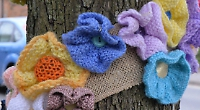 Woollen flowers spring up everywhere thanks to WI