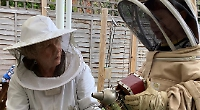 Nursery children buzzing at beekeeper visit