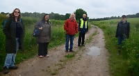 New campaign to improve hedges and support wildlife