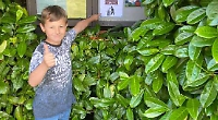 Boy, nine, puts up posters to help prevent littering