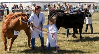 Returning agricultural show will be 'as large as possible'