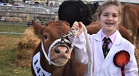 Henley Farm and Country Show returns after year off