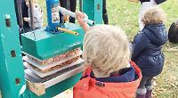 Pupils visit orchard