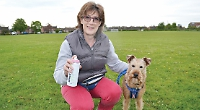 Thoughtless dog owners to be shamed with pink paint