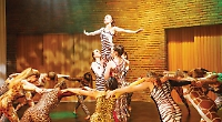 Fairytale performances by young dancers in charity show