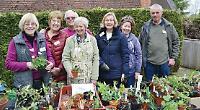 Plant sale in aid of village's renewed bid for bloom glory