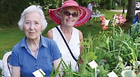 Temperatures rocket as sun shines on summer fetes