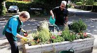 Volunteers brighten up village for summer with new plants