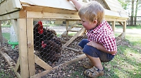 Tractor Ted is bringing 'Little Farm LIVE' to Stonor