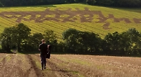 Man makes big impression for field marriage proposal
