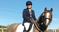 Dressage and show jumping champions are unveiled