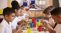 Council to provide school meals amid company collapse