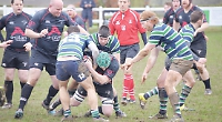 Abbey come unstuck in the mud against lowly Gosford All Blacks