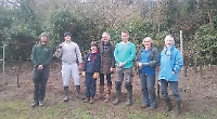 Edible hedge and vines planted at new orchard
