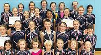 Springbox gymnasts in fine form