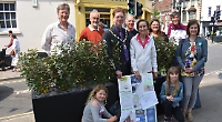 Pollution-busting shrubs on trial