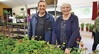 Plant sale raises £800 towards cost of traditional village show