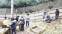 Pupils plant trees gifted by waste company