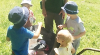 Children learn about nature