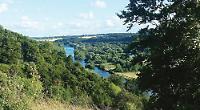 Riverside hedging to deter rowdies