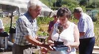 Former allotments secretary receives achievement award
