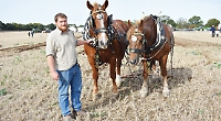 Perfect day for ploughing whether by modern tractor or old horse
