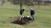 Tree planted to mark 250 years of the circus
