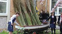 Girls create natural willow sculpture at art workshop