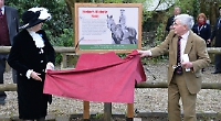 Village installs memorial to horse that survived war