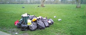 Would removing litter bins stop littering?
