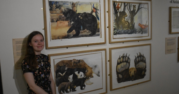 Museum Staff Put Their Teds On Show Henley Standard